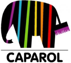 caparol-tulcea-300x266